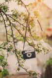 Παλαιός αναδρομικός η κάμερα κρεμά σε ένα Apple-δέντρο στην ηλιόλουστη ημέρα άνοιξη Στοκ φωτογραφίες με δικαίωμα ελεύθερης χρήσης