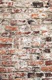 Παλαιός ανώμαλος αποσυντέθηκε ασπρισμένος shabby τουβλότοιχος Στοκ Φωτογραφίες