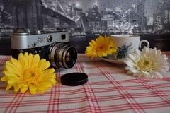 Παλαιός αλλά χρυσός Στοκ Φωτογραφίες