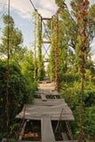 παλαιός γεφυρών που ανα&sigma Στοκ φωτογραφία με δικαίωμα ελεύθερης χρήσης