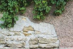 Παλαιός γκρίζος τοίχος Στοκ Φωτογραφία