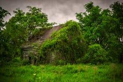 Παλαιός, εγκαταλειμμένος, εγκαταλελειμμένος, καλυμμένη κισσός καμπίνα στοκ φωτογραφία με δικαίωμα ελεύθερης χρήσης