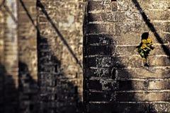 Παλαιός διάδρομος στη νότια Κίνα Στοκ Εικόνα