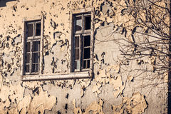 Παλαιός κίτρινος τοίχος αποφλοίωσης με δύο παράθυρα στοκ εικόνες με δικαίωμα ελεύθερης χρήσης