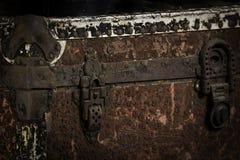 παλαιός κορμός Στοκ Εικόνες