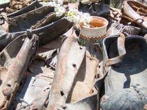 Παλαιός κλάδος ανθών βυσμάτων παπουτσιών (opinci) Στοκ φωτογραφίες με δικαίωμα ελεύθερης χρήσης