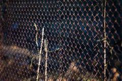Παλαιός μεταλλικός σκουριασμένος φράκτης σιδήρου χάλυβα πλέγματος βιομηχανικός Στοκ Εικόνες