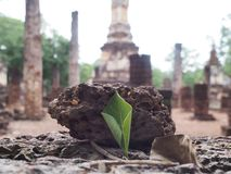 παλαιός ναός Ταϊλάνδη Στοκ Εικόνες