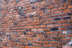 Παλαιός ξεπερασμένος τοίχος τούβλων, άποψη προοπτικής στοκ εικόνες