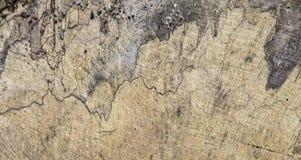 Παλαιός ξύλινος μίσχος με την αρμονική δομή στοκ εικόνα με δικαίωμα ελεύθερης χρήσης