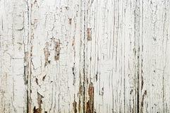 παλαιός ξύλινος πορτών Στοκ Φωτογραφίες