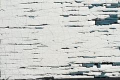 Παλαιός ξύλινος τοίχος με το ραγισμένο και άσπρο χρώμα αποφλοίωσης Στοκ Εικόνα