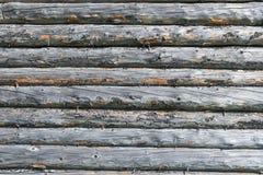 Παλαιός ξύλινος τοίχος σπιτιών κούτσουρων με το κυριώτερο σημείο από τον ήλιο στη δεξιά πλευρά Στοκ φωτογραφίες με δικαίωμα ελεύθερης χρήσης