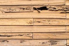 Παλαιός ξύλινος τοίχος στοκ φωτογραφία με δικαίωμα ελεύθερης χρήσης