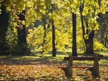 Παλαιός πάγκος στο φθινοπωρινό πάρκο Στοκ Εικόνες