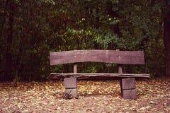 Παλαιός πάγκος το φθινόπωρο Στοκ εικόνα με δικαίωμα ελεύθερης χρήσης
