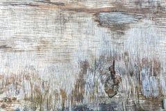 Παλαιός πίνακας κοντραπλακέ στους γκρίζους τόνους Στοκ Εικόνα