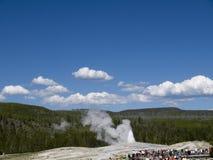 Παλαιός πιστός στο εθνικό πάρκο Yellowstone στις ΗΠΑ Στοκ Φωτογραφία