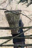 Παλαιός ποιμένας με πιό pannier στοκ φωτογραφία με δικαίωμα ελεύθερης χρήσης