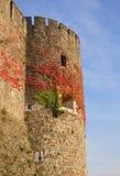 Παλαιός πύργος ενάντια στο μπλε ουρανό Gorizia Στοκ εικόνα με δικαίωμα ελεύθερης χρήσης