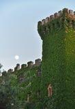 Παλαιός πύργος κάστρων που εισβάλλεται με τις αμπέλους Στοκ Φωτογραφίες