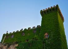 Παλαιός πύργος κάστρων που εισβάλλεται με τις αμπέλους Στοκ φωτογραφία με δικαίωμα ελεύθερης χρήσης