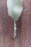Παλαιός σκουριασμένος ψευδάργυρος Στοκ φωτογραφία με δικαίωμα ελεύθερης χρήσης