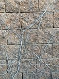 Παλαιός συγκεκριμένος τοίχος πετρών Στοκ Φωτογραφία