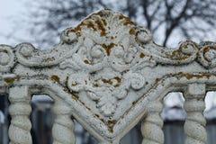 Παλαιός συγκεκριμένος φράκτης με το βρύο Στοκ Εικόνα