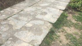 Παλαιός τοίχος και περπάτημα απόθεμα βίντεο