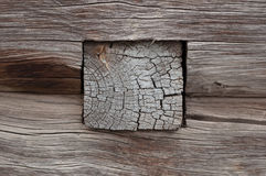 Παλαιός τοίχος κούτσουρων Στοκ Εικόνες