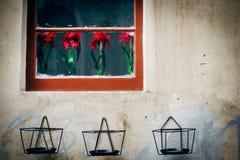 Παλαιός τοίχος με τα κόκκινα λουλούδια στη Λισσαβώνα Στοκ Εικόνα