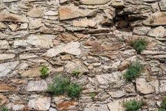 Παλαιός τοίχος πετρών με τις εγκαταστάσεις, καταστροφές πετρών Στοκ Εικόνες