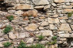 Παλαιός τοίχος πετρών με τις εγκαταστάσεις, καταστροφές πετρών Στοκ Εικόνα