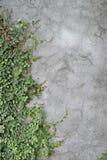 παλαιός τοίχος σύστασης τούβλου ανασκόπησης Στοκ Εικόνες