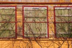Παλαιός τοίχος του σπιτιού. Στοκ φωτογραφίες με δικαίωμα ελεύθερης χρήσης