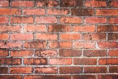 παλαιός τοίχος τούβλου ανασκόπησης Στοκ Φωτογραφία