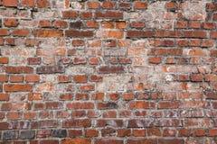 Παλαιός τραχύς τουβλότοιχος που ξεπερνιέται Στοκ Εικόνες