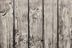 Παλαιός φράκτης σανίδων ξύλου πεύκων με τους κόμβους - λεπτομέρεια Στοκ Εικόνες