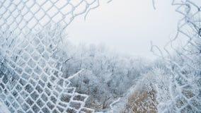 Παλαιός φράκτης στο χιόνι με την τρύπα Στοκ Εικόνα