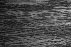 Παλαιός φυσικός ξύλινος shabby στενός επάνω υποβάθρου Στοκ Φωτογραφία