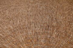 Παλαιός φυσικός υποβάθρου στεγών Thatched Στοκ Φωτογραφίες