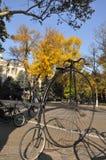 Παλαιότερο ποδήλατο Στοκ Εικόνες