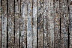 παλαιό δάσος ανασκόπησης Στοκ Φωτογραφίες