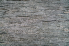 παλαιό δάσος ανασκόπησης Στοκ φωτογραφίες με δικαίωμα ελεύθερης χρήσης