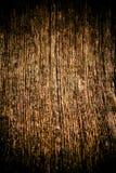 παλαιό δάσος σύστασης ανασκόπησης Στοκ Εικόνα
