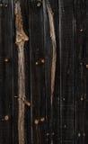 παλαιό δάσος σύστασης ανασκόπησης Στοκ φωτογραφία με δικαίωμα ελεύθερης χρήσης