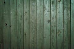 παλαιό δάσος σύστασης Στοκ εικόνες με δικαίωμα ελεύθερης χρήσης