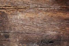 παλαιό δάσος τοίχων Στοκ Εικόνες