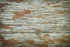 παλαιό δάσος Στοκ Φωτογραφίες